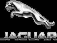 Ягуар/Jaguar